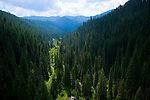 Idaho, North, Wallace, Avery. A valley and unnamed creek in the St. Joe National Forest of the Bitterroot Mountains, covered in sub alpine fir.