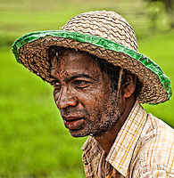 A rice farmer, hard at work in the tropical heat. (Photo by Matt Considine - Images of Asia Collection)