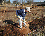 Julia O'Haver was among volunteers working at the Community Garden on Monday, January 18, 2010.