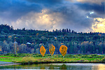 Tye Lake, Monroe, Washington