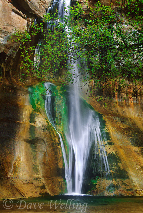 792800214 lower calf creek falls is a stunning isolated waterfall at the end of a long hike in escalante grand staircase national monument in utah
