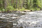 Änättikoski rapids, Lentiira, Kuhmo, Finland, Vartius near Russian Border, good trout fishing point