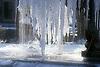 Winter | Invierno | Winter