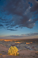 Sunrise at Little Painted Desert County Park, Navajo County, north of Winslow, Arizona, AGPix_1881