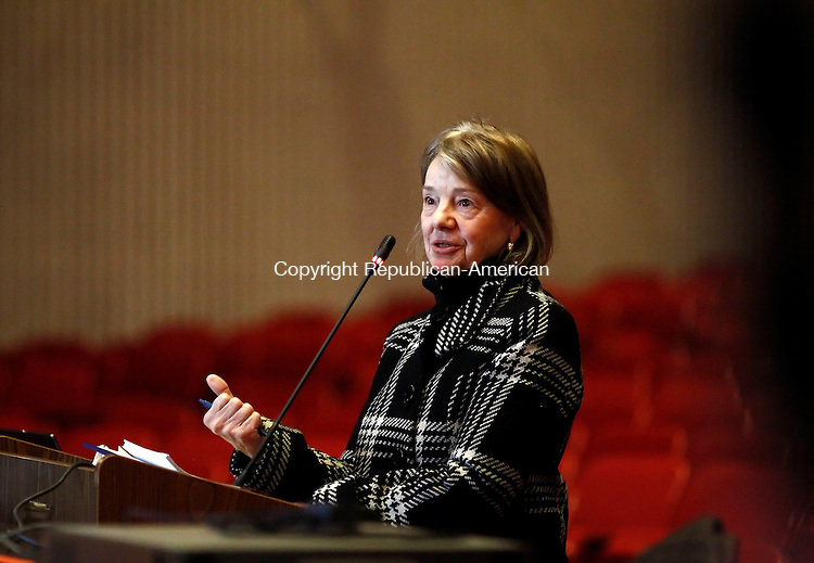 Southbury, CT- 12 February 2014-021214CM03-  Attorney Gail E. McTaggart, with Secor Cassidy and McPartland PC addresses the Southbury Zoning Commission during a meeting at Pomperaug High School Wednesday night. The town held a public hearing on a proposed movie theater to be built on Main Street in Southbury. Christopher Massa Republican-AmericanChristopher Massa Republican-American