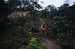 YANOMAMI INDIANS. South America, Brazil, Amazon. Family outside Molaca or Shabono traditional dwelling, after forest fires. Yanomami indians, a primitive tribe, living in the tropical rainforest, in communal traditional molaca dwellings. They are huntergatherers passing on their traditions and skills  from generation to generation. They are the guardians of their forest and its fragile ecosystem. Their lifestyle and their lands diminish every year in the face of encroaching deforestation, forest fires, campesinos who slash and burn primary rainforest, from cattle ranching, commercial plantations, gold and diamond mines.