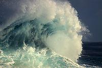 A big wave pitching towards shore, North Shore, O'ahu.