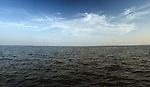 Bayshore Views