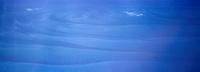 Iles Bahamas /Ile de Long Island: en avion au dessus des Bahamas et de l'océan Atlantique les courants dans la mer -Vue aérienne