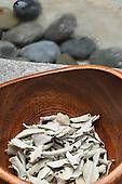Stock photos of eucalyptus in a bowl