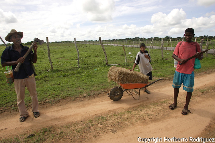 An Afro-Mexican family makes their way to work at a San Nicolas ranch in the coast of Guerrero state, July 6, 2005. Afro- Mexicans are considered one of the three ethnic roots that comprise Mexico. Photo by Heriberto Rodriguez