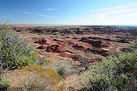Navajo County, Arizona – The Painted Desert viewed from the Tiponi Point shows its mesas, buttes and badlands. The colors are to ancient environmental conditions. This vast area is known as the Chinle Formation. The Painted Desert is a broad region of rocky badlands featuring unique rocks in a variety of hues - lavenders, grays, reds, oranges and pinks. Located in Northeastern Arizona, the Painted Desert attracts hundreds of thousands a visitors each year. Photo by Eduardo Barraza © 2014