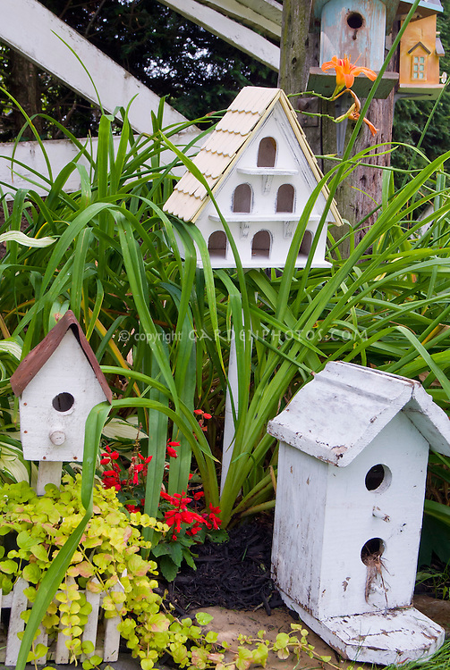 Charming array of bird houses plant flower stock for Different bird houses