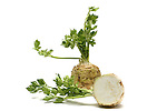 Celery Root still life.