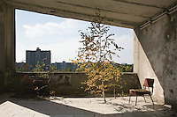A silver birch tree grows through the floor on the terrace of Hotel Polissia. The hammer and sickle is visable atop the distant appartments.<br />