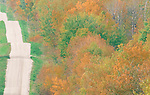 Parkland forest, fall colour, Riding Mountain Manitoba near Minnidosa.