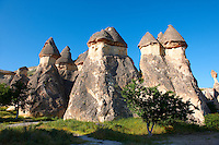 Fairy chimney tuff rock pillars formations of  Zelve, Cappadocia, Turkey