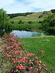 Anderson Valley in Mendocino County