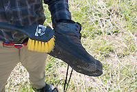 Cleaning mud from wading boots before fishing a stream in the Driftless Region of Wisconsin.