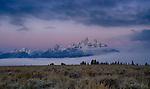 Morning Twilight glows above the Teton Range in Grand Teton National Park, Wyoming.