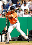 21 May 2007: Baltimore Orioles outfielder Arturo Rivas in action against the Toronto Blue Jays during Baseball's Annual Hall of Fame Game at Doubleday Field in Cooperstown, NY. The Orioles defeated the Blue Jays 13-7 in front of a sellout crowd of 9,791 at the historical ballpark...Mandatory Credit: Ed Wolfstein Photo