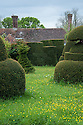 Topiary Lawn, Great Dixter, early May.