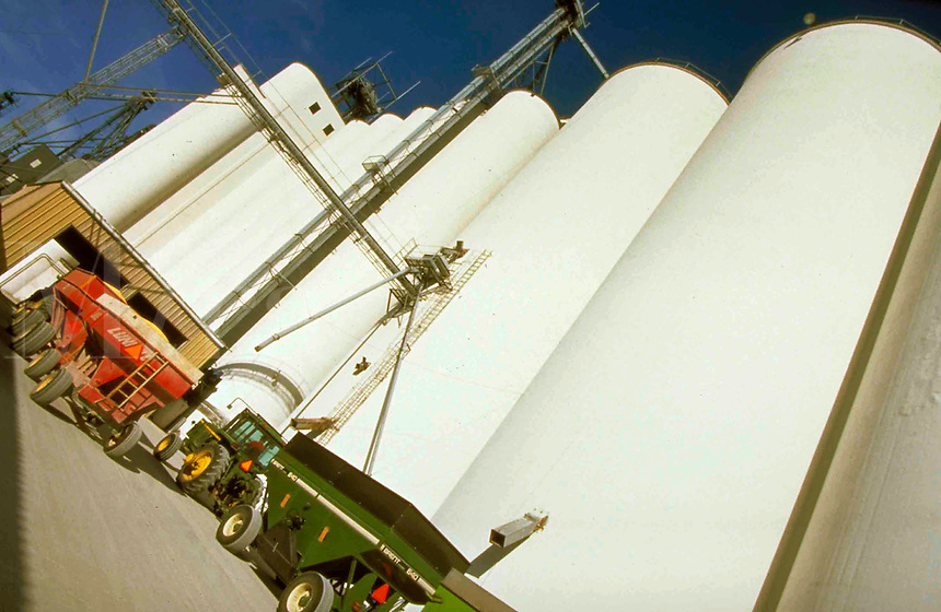 Farmers line up at the regional grain elevator to deliver their autumn corn soybean harvest.