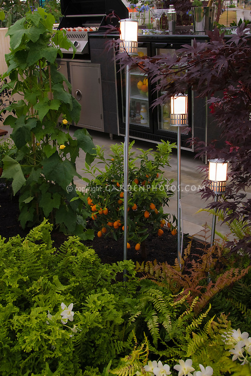 Upscale patio with expensive grill, pole lights, plants, landscaping