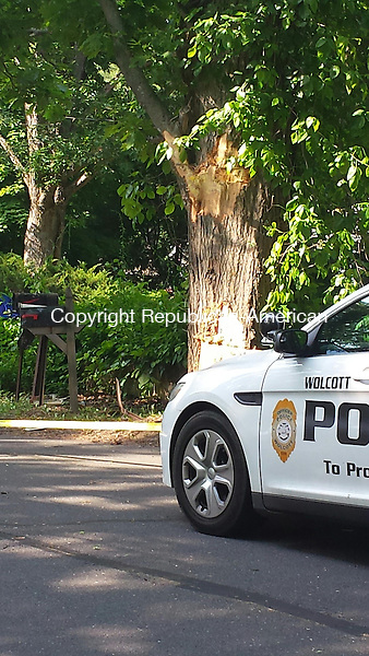 WOLCOTT, CT - May 8, 2015 - 05082015LX02 - A school bus hit this tree during an accident on Monday that sent four people to the hospital.