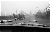 THE ROAD NEAR SINTESTI. ROMANIA NOVEMBER 1996..©JEREMY SUTTON-HIBBERT 2000..TEL. /FAX.+44-141-649-2912..TEL. +44-7831-138817.