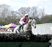Torlundy wins Imperial Cup at Ford Conger Field, Aiken, S.C., 3/20/2010, for trainer Leslie Young and jockey Paddy Young.