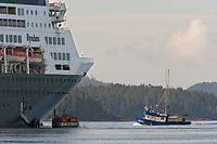 Commercial fishing boat passes Holland America Cruise ship Ooseterdam anchored in Sitka Sound, Sitka, Alaska