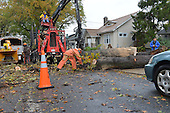 October 30, 2012  (Washington, DC)  A tree cutting crew removes a fallen tree in the 1000 block of Evarts St. NE after Hurricane Sandy.  (Photo by Don Baxter/Media Images International)