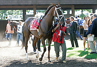 Life At Ten walks in the paddock before the Grade II Delaware Handicap at Delaware Park, a race that she won last year. This year she finished third, well behind winner Blind Luck and runner-up Havre de Grace. Stanton, DE, July 16, 2011.  (Joan Fairman Kanes/Eclipsesportswire)