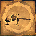 Man on a boulder in the yoga pose Eka Pada Koundinyasana II.