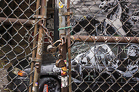 Graffiti enthusiasts flock to a vacant lot in the Lower East Side neighborhood of  New York on Wednesday, October 9, 2013 to see the ninth installment of Banksy's graffiti art. This particular installment is viewed through a chain link fence and a locked fence. The elusive street artist is creating works around the city each day, during the month of October accompanied by a satirical recorded message parodying a museum tour which you can get by calling the number 1-800-656-4271 followed by  # and the number of artwork.  (© Richard B. Levine)