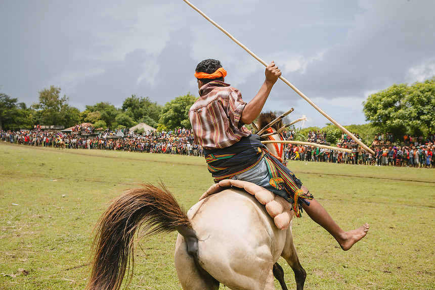 A Pasola warrior ready to charge the enemy forces during the event in Wainyapu, Kodi. Pasola is an ancient tradition from the Indonesian island of Sumba. Categorized as both extreme traditional sport and ritual, Pasola is an annual mock horse warfare performed in response to the harvesting season. In the battelfield, the Pasola warriors use blunt spears as their weapon. However, fatal accident still do occurs.