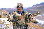 John Carrying Anesthetized Coyote