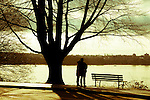 A couple standing in light and shadow under a tree next to park bench looking onto estruary