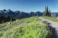 Tatoosh Mountains and trail through subalpine wildflower meadow, Paradise, Mount Rainier National Park, Washington