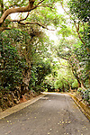 Taiwan Roads