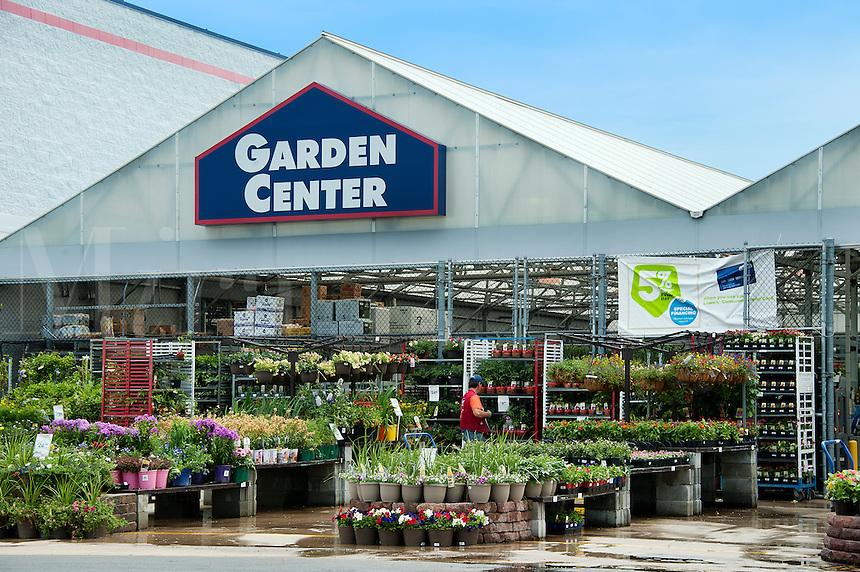 0554H371Mjpg – Lowes Garden Center Plants