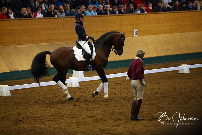Rose Mathisen is riding the stallion Don Bocelli 1044 and Kyra Kyrklund gives instructions.<br /> Thousands of dressage fans are filling the grandstand during Kyra's clinic at Helsingborgs Faltridklubb, Helsingborg, Sweden.<br /> March 2010.<br /> Only for editorial use.