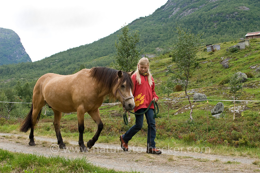 Wanderritt mit Pony in Nord-Norwegen, Mädchen führt das Pony am Führstrick, Wander-Ausritt, Ausritt, Reiten