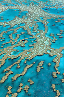 QZ0452-D. Aerial view of coral reefs. Great Barrier Reef, Australia, Pacific Ocean.<br /> Photo Copyright &copy; Brandon Cole. All rights reserved worldwide.  www.brandoncole.com
