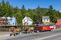 Horse drawn carriage takes tourists around the famous Creek Street in downtown Ketchikan, southeast, Alaska.
