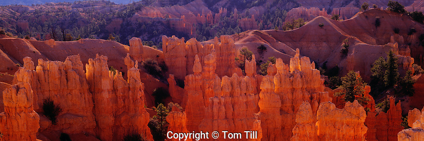 Fairyland Canyon, Bryce Canyon National Park,<br /> Utah