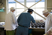 Elderly prisoners (in white) preparing lunches for their fellow inmates, presided over by a prison guard, in Onomichi prison, Japan. Monday, May 19th, 2008. Many of the elderly prisoners suffer from high blood pressure and diabetes, with 70-80% of them receiving medication.