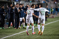 HEMPSTEAD, NY – OCTOBER 12: Alessandro Noselli of the New York Cosmos celebrates a goal against the Carolina RailHawks during an NASL match on October 12, 2013 at  Shuart Stadium in Hempstead, New York.