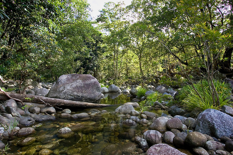 The Mossman River in the Daintree Rainforest, Queensland, Australia
